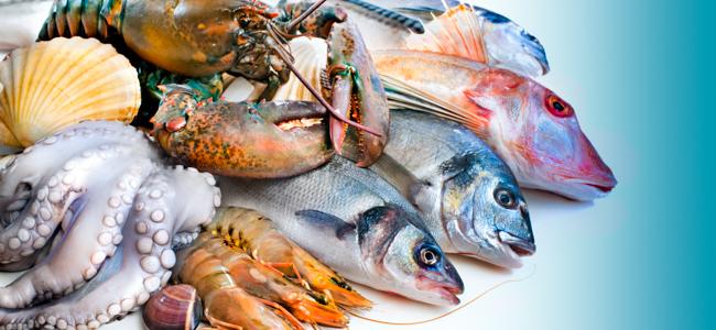 Φρέσκα Αλιεύματα